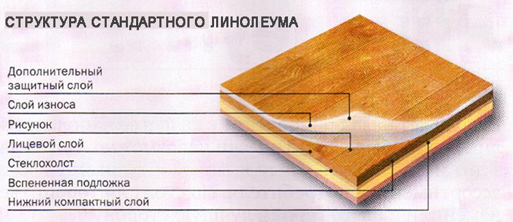 shematicheskoe-izobrazhenie-struktury-standartnogo-sovremennogo-[1]
