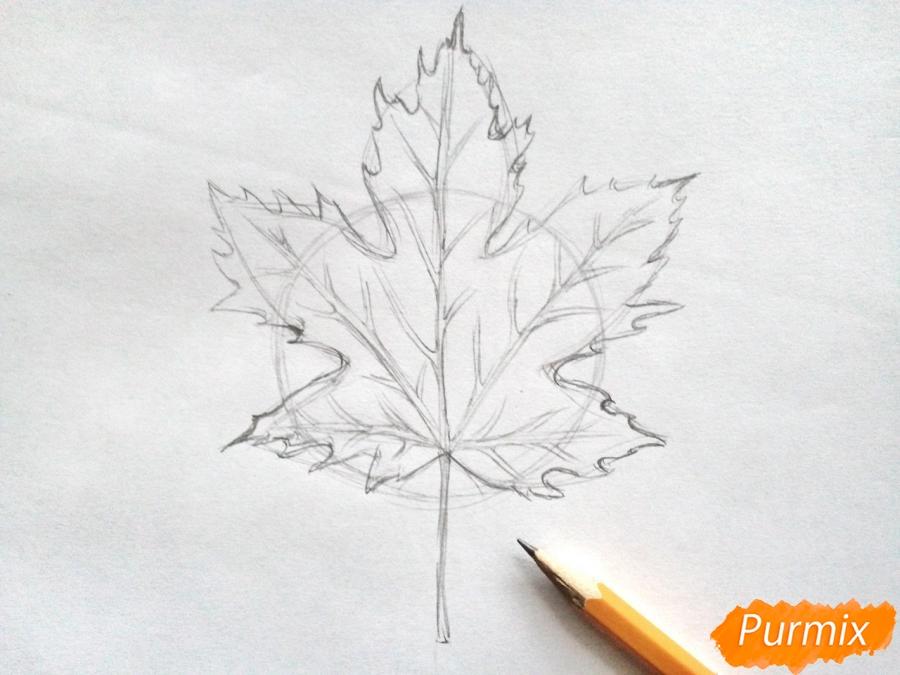 Рисуем кленовый лист черной ручкой - шаг 3