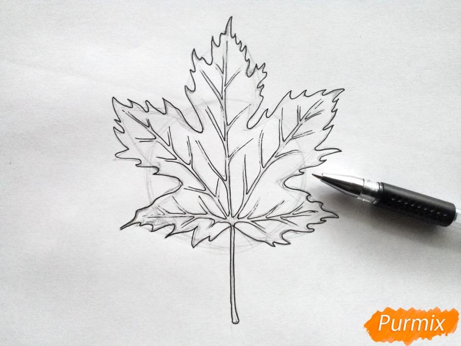 Рисуем кленовый лист черной ручкой - шаг 4