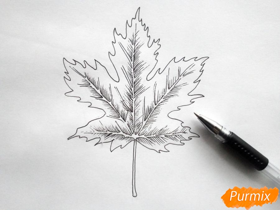 Рисуем кленовый лист черной ручкой - шаг 5