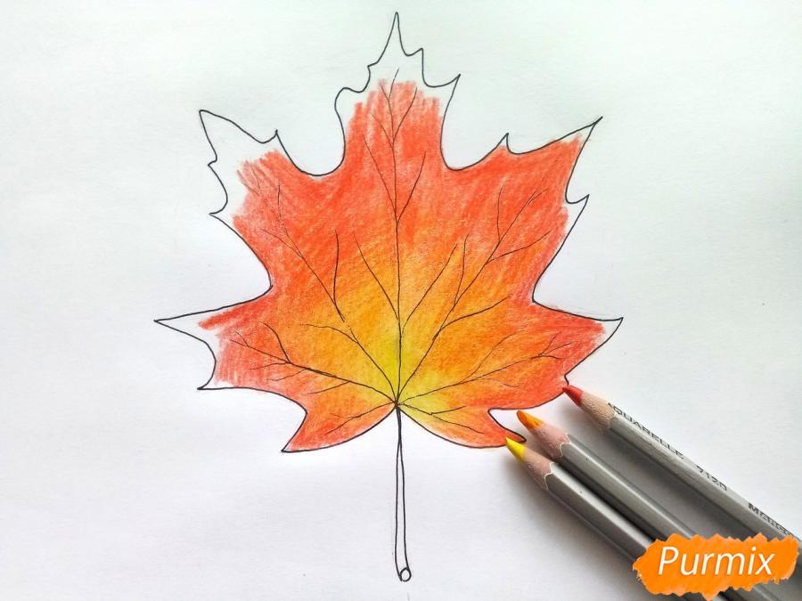 Рисуем кленовый лист цветными карандашами - шаг 5