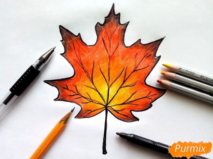 Рисуем кленовый лист цветными карандашами - шаг 8