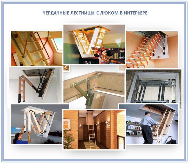 Современные лестницы с люком