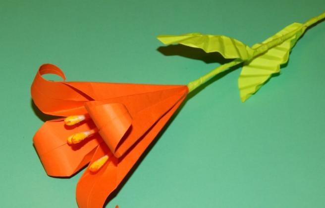 Цветы из бумаги — схемы и шаблоны для создания бумажных цветов этап 127