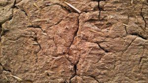 Шпаклевка глиняных стен