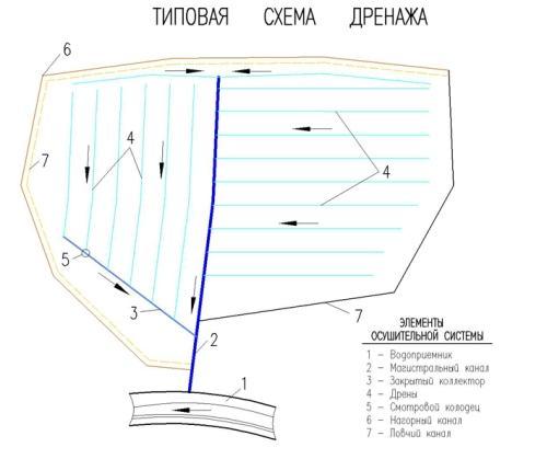 Дренаж участка