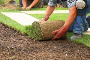 Подготовка участка к укладке рулонного газона