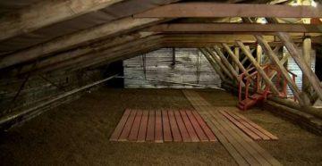 Как избавиться от летучих мышей на балконе, в доме, квартире, на чердаке, под крышей и в других местах