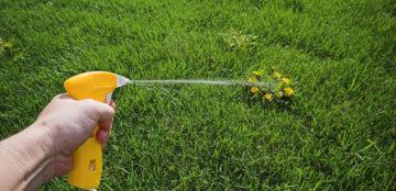 Zashchita-rasteniy.com — Средства защиты и обработки растений с доставкой на дом