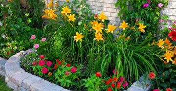 Цветы на даче: создание цветника своими руками